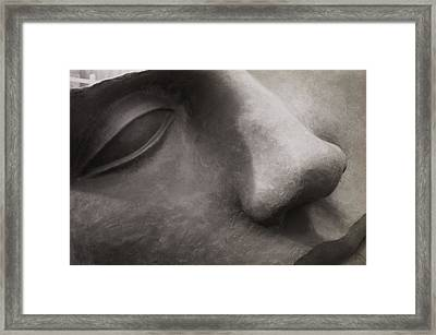 Stone Face Framed Print