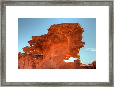 Stone Faced Framed Print by Bob Christopher