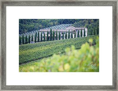 Stone Farmhouse And Vineyard Framed Print by Jeremy Woodhouse