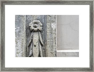 Stone Flower Framed Print by Agnieszka Kubica