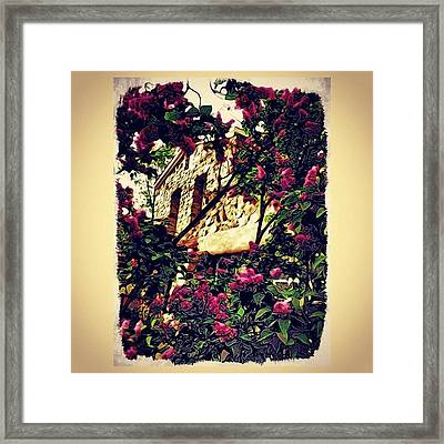 Stone House With Lilacs Framed Print