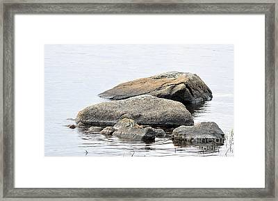 Stone In Calm Water Framed Print by Conny Sjostrom