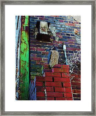 Stone Owl Framed Print