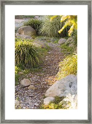Stone Path Through Garden Framed Print by James Forte