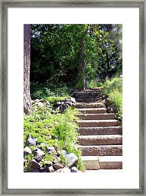 Stone Steps Framed Print by Myrna Migala