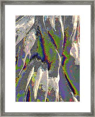 Stoned Mane Framed Print