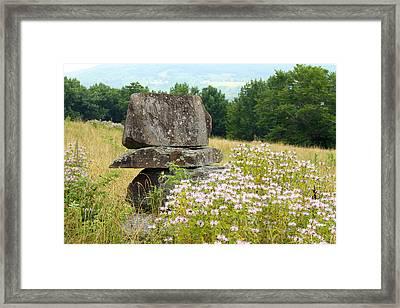 Stonehenge Pa Framed Print