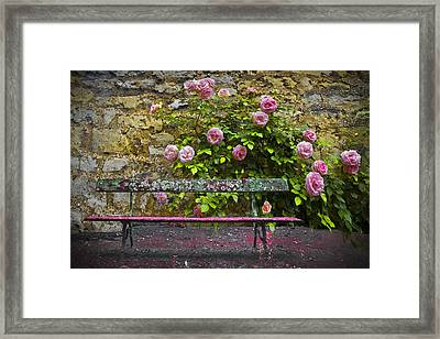 Stop And Smell The Roses Framed Print by Debra and Dave Vanderlaan