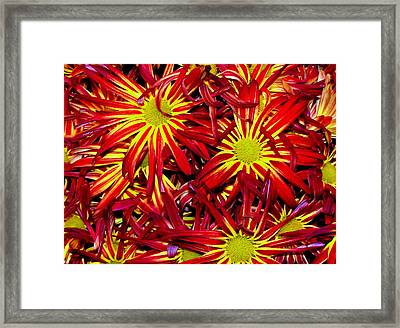 Store-bought Beauty Framed Print