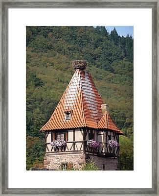 Stork Nest In Alsace France Framed Print by Christopher Mullard