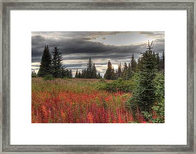 Framed Print featuring the photograph Storm Clouds In Fall by Michele Cornelius