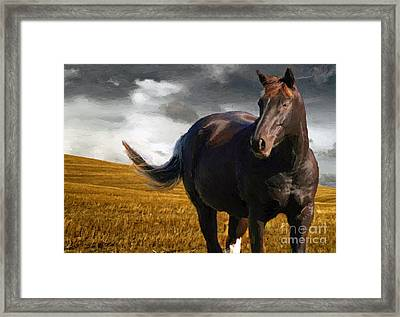 Storm Framed Print by Jerry L Barrett