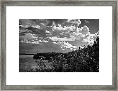 Storm On The Bayou Framed Print