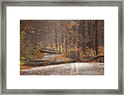 Stormy Autumn Framed Print by Karol Livote