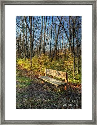 Storybook Bench Framed Print by Pamela Baker