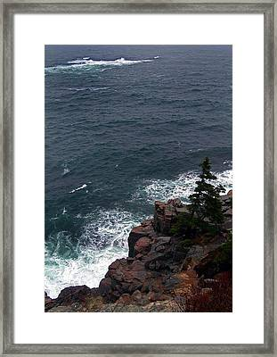Straight Down Framed Print by Skip Willits