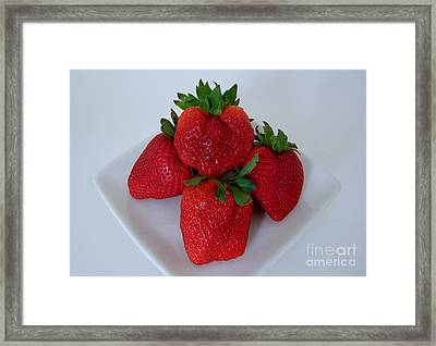 Strawberries On A White Plate Framed Print by Mary Deal