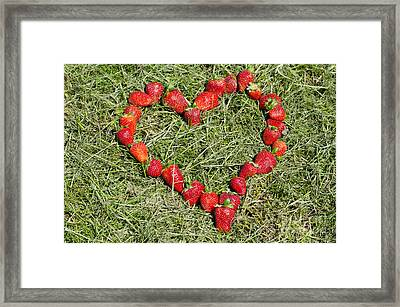 Strawberry Heart Framed Print by Mats Silvan
