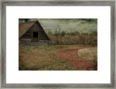 Strawberry Lane  Framed Print by Jerry Cordeiro