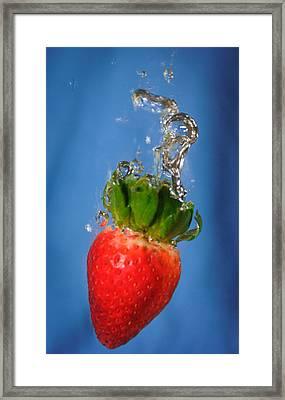 Strawberry Plunge Framed Print by John White