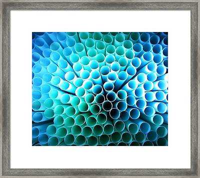Straws Of Life Framed Print