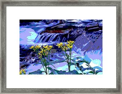 Stream And Flowers Framed Print