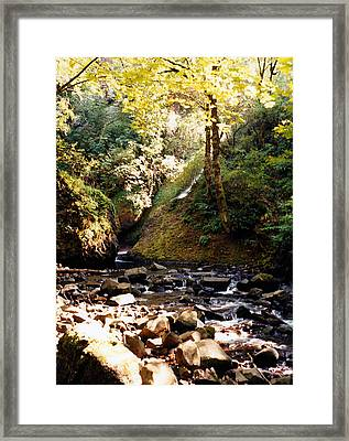 Framed Print featuring the photograph Stream Bed Oregon by Maureen E Ritter