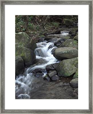 Stream Framed Print by Victoria Lamp