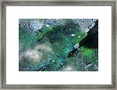 Streambed Leaves 2 Framed Print by Jennifer Bright