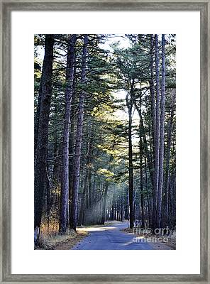 Streaming Dawn Framed Print by Whispering Feather Gallery