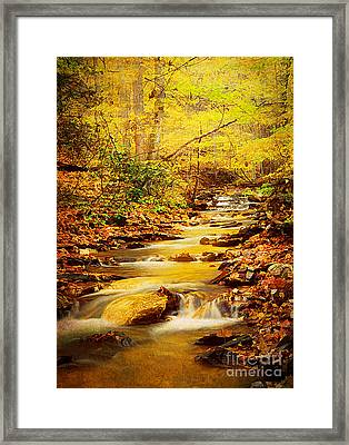 Streams Of Gold Framed Print by Darren Fisher