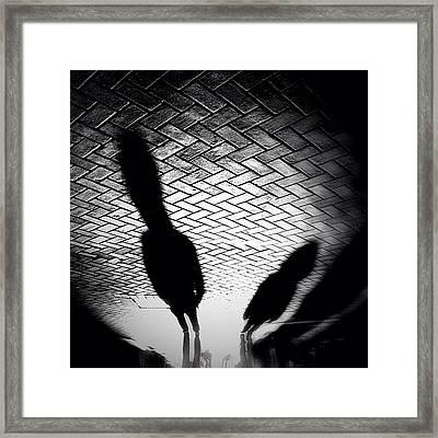 Streetwise. Last Sun/shadow Post For Framed Print