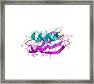 Streptococcal Protein G Molecule Framed Print by Laguna Design