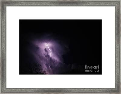 Striking Framed Print by Crissy Sherman