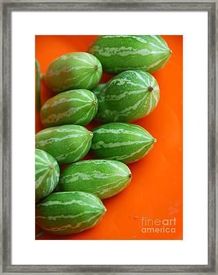 Stripes Framed Print by Glimpses - Prasad Datar-Archana Padhye Photography
