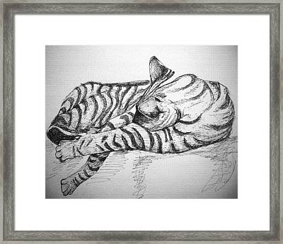 Framed Print featuring the drawing Stripes by Mary Schiros