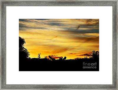 Stripey Sunset Silhouette Framed Print by Kaye Menner