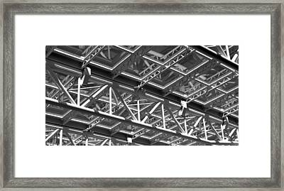 Structural Network Framed Print