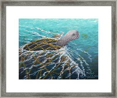 Struggle -leatherback Sea Turtle Framed Print