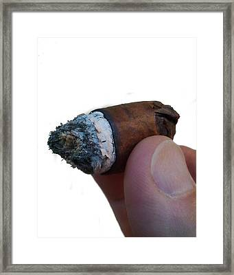 Framed Print featuring the photograph Stubby by Steve Sperry