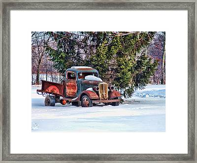 Framed Print featuring the photograph Stuck by Mary Timman