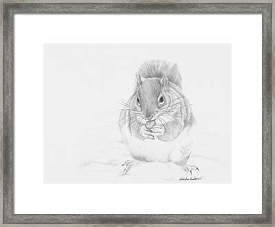 Stuffed Framed Print by Christopher Brooks