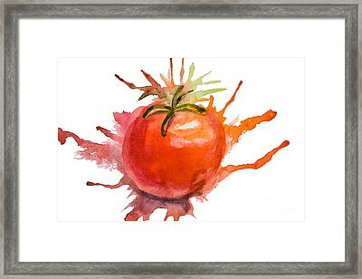Stylized Illustration Of Tomato Framed Print by Regina Jershova