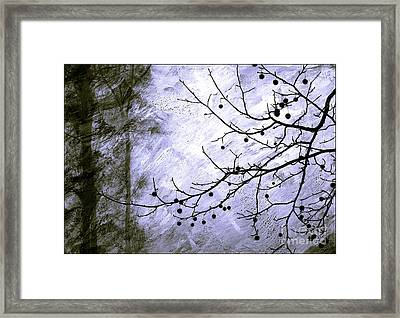 Sudden Snowstorm Framed Print by Judi Bagwell