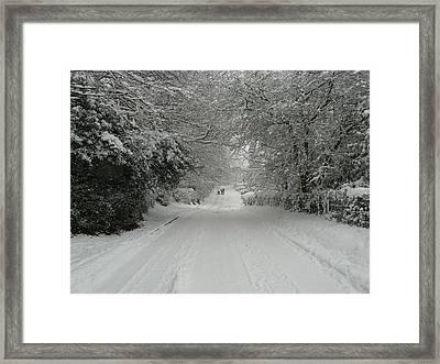 Sugar Road IIi Framed Print by Rdr Creative
