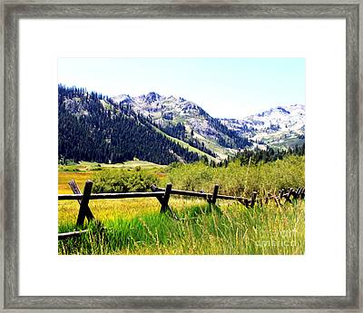 Summer At Squaw Valley Framed Print by Anne Raczkowski