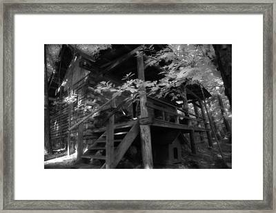 Summer At The Cabin Framed Print by Greg Kopriva