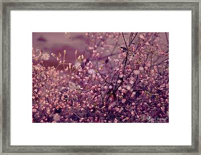 Summer Framed Print by Aunit Sharma