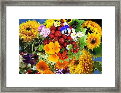 Framed Print featuring the photograph Summer Collage - Imagination by Aleksandr Volkov