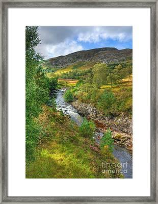 Summer Colour In The Glen Framed Print by John Kelly